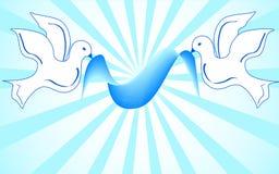 Pombas brancas que prendem a fita azul. vetor Imagem de Stock
