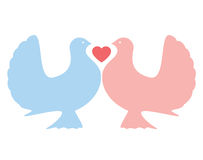 Pombas do amor Imagens de Stock