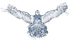 Pombo da água ilustração royalty free