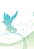 Pombo da paz Imagem de Stock