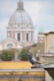 Pombo de rocha com Santa Maria di Loreto Imagem de Stock Royalty Free