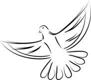 Pombo em voo, pombo no preto, pássaro logotipo em voo, do pombo e do pássaro ilustração stock