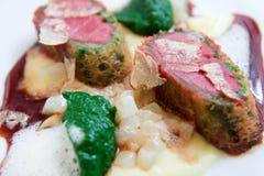 Pombo fritado com puré da couve-rábano e da salsa imagens de stock royalty free