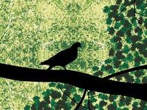 Pombo na árvore ilustração do vetor