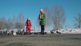 Pombos de alimentação da menina e da mulher em um parque da cidade filme