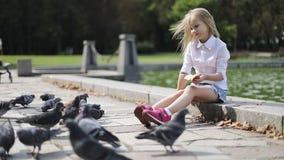 Pombos de alimentação da menina loura bonito pão no parque perto do lago filme