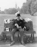 Pombos de alimentação do homem no banco de parque (todas as pessoas descritas não são umas vivas mais longo e nenhuma propriedade Foto de Stock Royalty Free