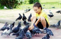 Pombos de alimentação do menino Fotografia de Stock Royalty Free