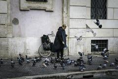 Pombos de alimentação em Roma Imagem de Stock