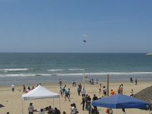 Pombos de voo gaivota e pelicanos acima do céu azul das ondas nebulosas do mar de Ensenada da praia da esplanada do quebra-mar do Imagem de Stock Royalty Free