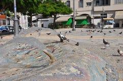 Pombos em Chipre Foto de Stock Royalty Free