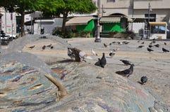 Pombos em Chipre Foto de Stock