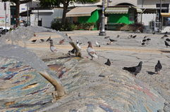 Pombos em Chipre Fotografia de Stock Royalty Free