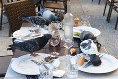 Pombos que comem em um restaurante Fotos de Stock