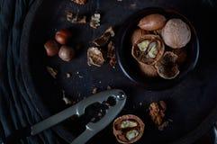 Pomegranade su legno rustico Immagine Stock Libera da Diritti