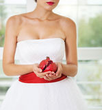Pomegranat in hands of a bride Royalty Free Stock Photo