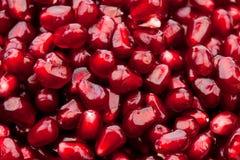 pomegranate зерен Стоковые Фотографии RF