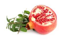 Pomegranate с зелеными листьями Стоковые Изображения