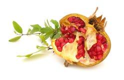 Free Pomegranate Royalty Free Stock Photos - 10730248