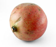pomegranate Arkivbild