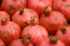 Pomegranate 2 Stock Photography