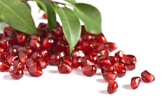 Pomegranate. Juicy pomegranate with leaves on white stock images