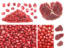Pomegranate. Background and other elements royalty free stock images