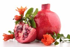 pomegranate Arkivfoto