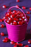 Pomegranate. Royalty Free Stock Photo