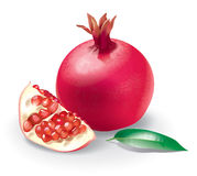 Pomegranate illustration Royalty Free Stock Photos