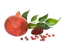 Pomegranate and arils. Isolated on white background stock photos