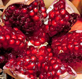 Pomegranate background Stock Images