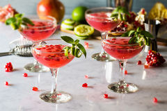 Pomegranate Basil Martini or Gin Smash Cocktail. Pomegranate and basil cocktails with a twist of lime in vintage glasses on a marble countertop. It could be a stock images
