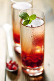 Pomegranate cocktail Stock Image