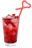 Pomegranate cocktail Royalty Free Stock Images