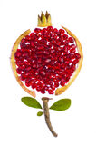 Pomegranate concept photo. Concept photo of pomegranate on white background Royalty Free Stock Photo