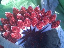 Pomegranate cones Royalty Free Stock Image