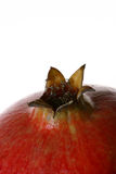 Pomegranate detail 5 Royalty Free Stock Image