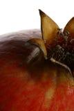 pomegranate för 6 detalj royaltyfri foto