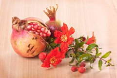 Pomegranate with flowers Stock Photos