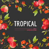 Pomegranate, Flowers and Leaves. Exotic Graphic Tropical Banner Stock Photos