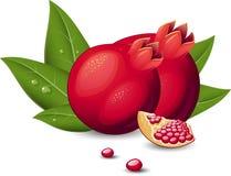 Pomegranate Fruit royalty free illustration