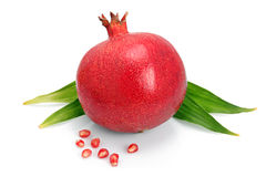 Pomegranate fruit with green leaf and seeds Stock Image