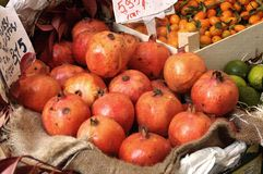 Pomegranate fruit on market Stock Image