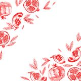 Pomegranate fruit vintage design template. Botanical fruit. royalty free illustration