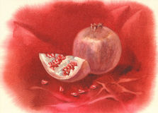 Pomegranate fruit watercolor Royalty Free Stock Image