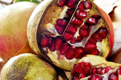 Pomegranate fruits Royalty Free Stock Photo