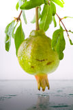 Pomegranate Fruits Stock Images