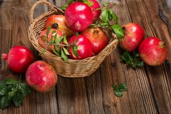 Organic pomegranate fruits with twigs. Royalty Free Stock Images