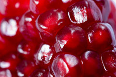 Pomegranate grains Royalty Free Stock Photography